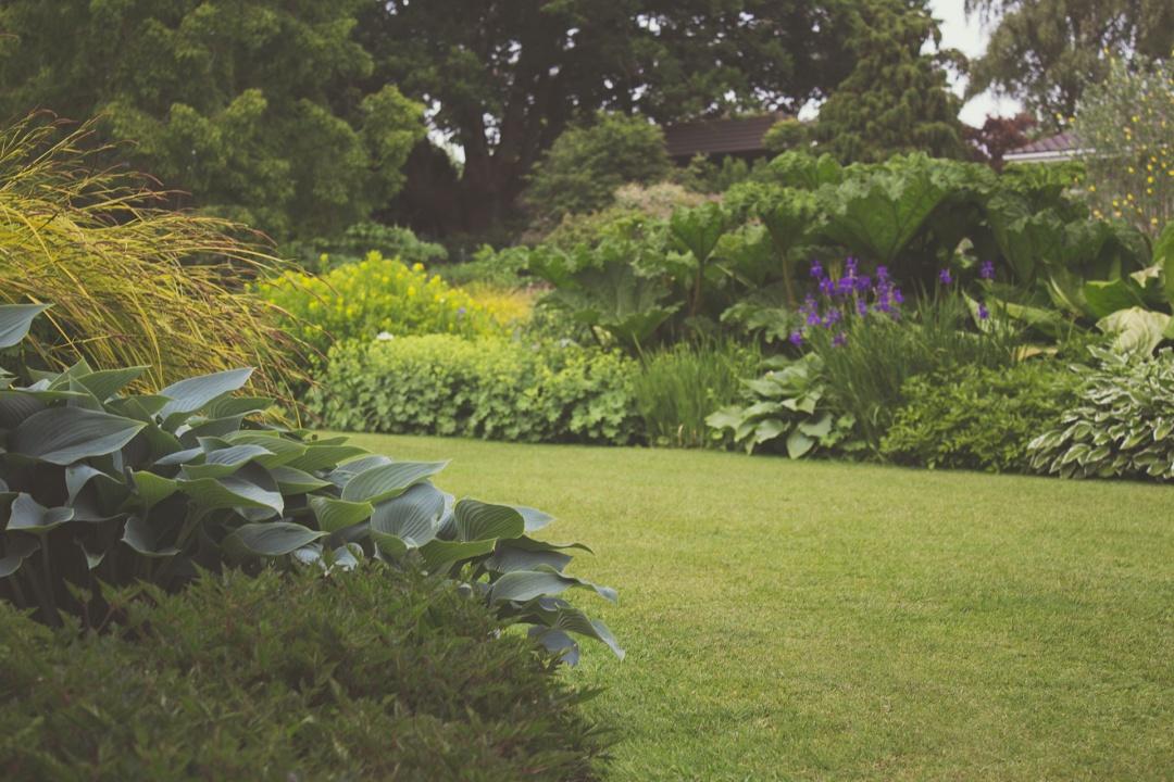 Hyvin hoidettu puutarha